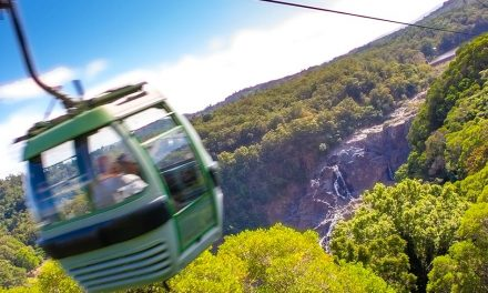 Things to Do in Cairns – World's Oldest Rainforest via Skyrail to Kuranda