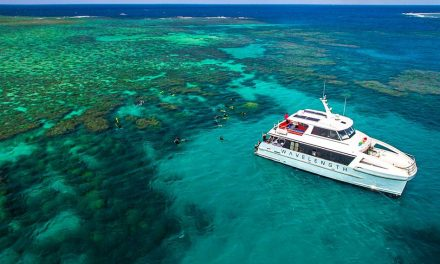 Great Barrier Reef: A Guide To Port Douglas Reef Tours