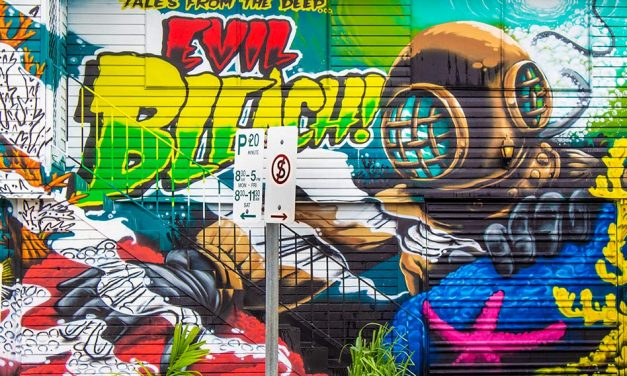 Things to Do in Cairns – Sea Walls Street Art